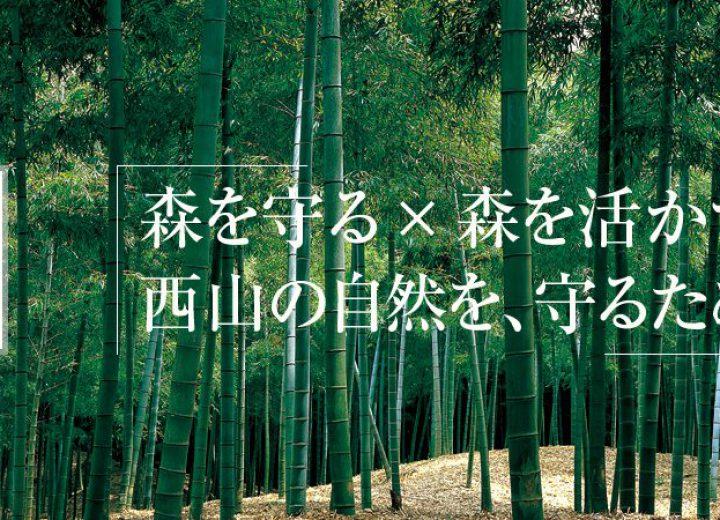 長岡京市森林組合~収益は森林整...